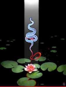 Kundalini Serpent.