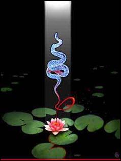 snake-kundalini