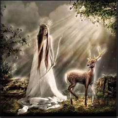 Artemis-the-hunters-of-artemis-30711061-300-300