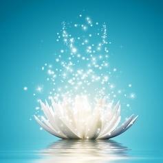 magical-lotus