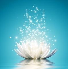 magical-lotus